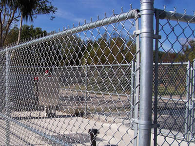 Galvanized anti-intruder chain link fence with posts to fix in a tree farm.